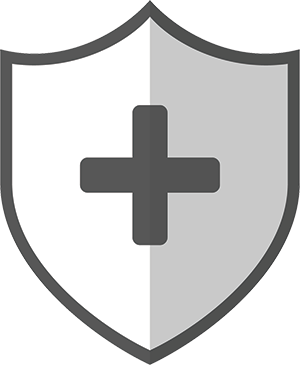 Icon with Plus Sign on Shield